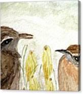 Conversation In The Crocus Canvas Print