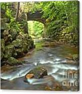 Cook Forest Stream Under The Bridge Canvas Print