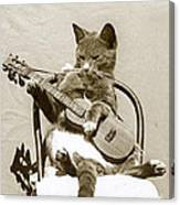 Cool Cat Playing A Guitar Circa 1900 Historical Photo By Photo  Henry King Nourse Canvas Print