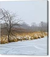 Cool Dreams Winter Canvas Print