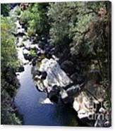 Cool Mountain Creek Canvas Print