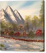 Cool Mountain River Canvas Print