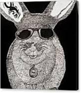 Cool Rabbit Canvas Print