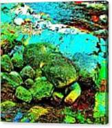Coos Canyon 23 Canvas Print