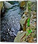 Coos Canyon 332 Canvas Print