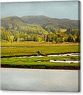 Coos River Canvas Print