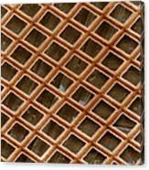 Copper Electron Micrograph Grid Canvas Print
