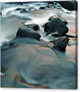 Copper Stream 1 Canvas Print
