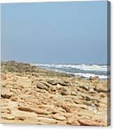 Coquina Rock On A Florida Beach Canvas Print