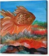 Coral Land Goldfish Canvas Print