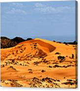 Coral Pink Sand Dunes Utah Canvas Print
