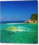 Coral Seas Haiti Canvas Print