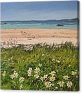 Coral Strand Summers Day Connemara Ireland Canvas Print