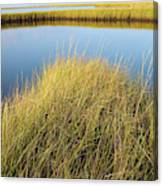 Cordgrass And Marsh, Southern Canvas Print