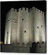 Cordoba Castle By Night Canvas Print