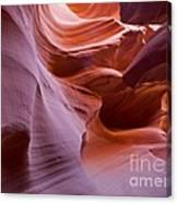 Corkscrew Canyon Canvas Print