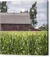 Corn Field And Barn Canvas Print