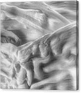 Corn Husk - A Beautiful Chaos Canvas Print
