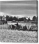 Corn Picker November 2013 Canvas Print