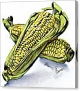 Corn Study Canvas Print