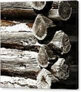Corner Logs Canvas Print