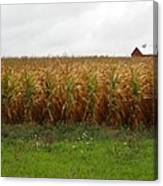 Cornfield And Farmhouse Canvas Print