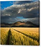 Cornfield Mountains Canvas Print