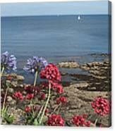 Cornwall Newlyn Coast One Canvas Print