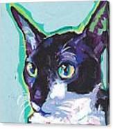 Corny Kitty Canvas Print