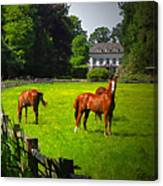 Corralled Horses - Featured In And Lets All Participate And Abc Groups Canvas Print
