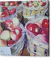 Cortland Apples Canvas Print