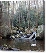 Cosby Creek Canvas Print