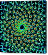 Cosmic Cacti In Spokane Canvas Print