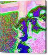 Cosmic Consciousness Canvas Print
