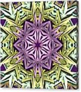 Cosmic Electricity Canvas Print