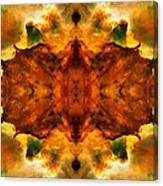 Cosmic Kaleidoscope 2  Canvas Print