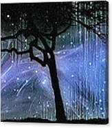 Cosmic Night Canvas Print