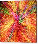 Cosmic Phenomenon Or Christmas Lights Canvas Print