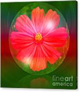 Cosmos Bubble Canvas Print