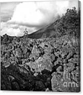 Costa Rican Volcanic Rock  Canvas Print