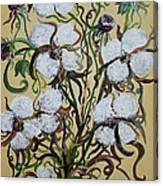 Cotton #2 - Cotton Bolls Canvas Print