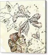 Cotton Bowl Canvas Print