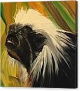 Cotton Top Tamarin Zack Half Of All Proceeds Go To Jungle Friends Primate Sanctuary Canvas Print