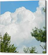 Cottonballs In The Sky Canvas Print