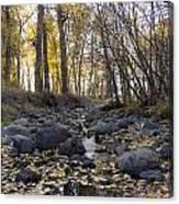 Cottonwood Creek Near Deer Lodge Montana Canvas Print