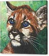 Cougar Prince Canvas Print