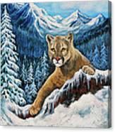 Cougar Sedona Red Rocks  Canvas Print