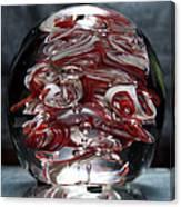 Cougar Spirit Glass Canvas Print