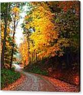 Country Autumn Gravel Road Canvas Print