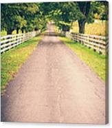 Country Back Roads Canvas Print